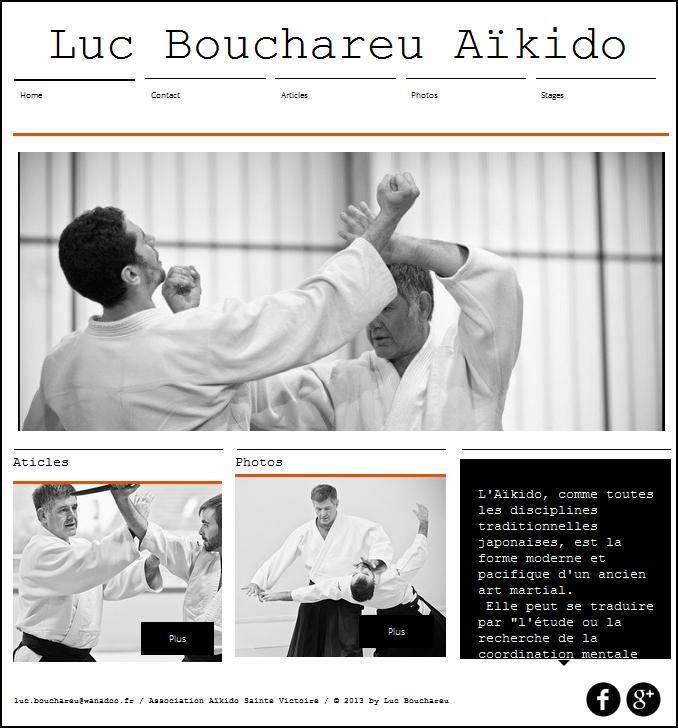 nouveau site Luc Bouchareu